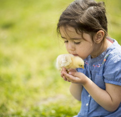 Cute girl with chicken